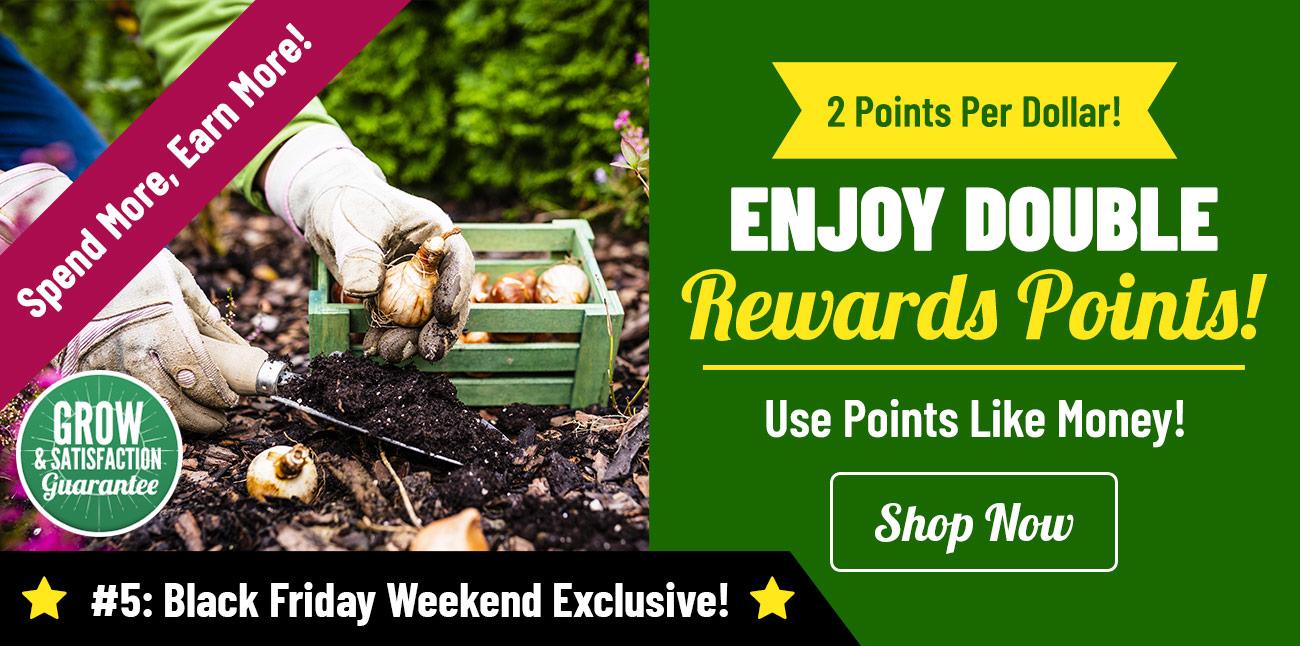 Earn 2X Flower Rewards Points